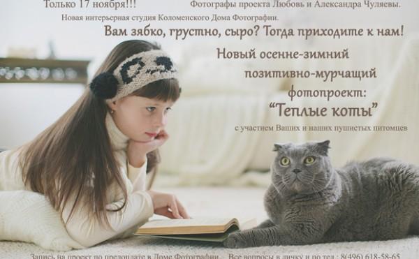 Тёплые коты. Фотопроект